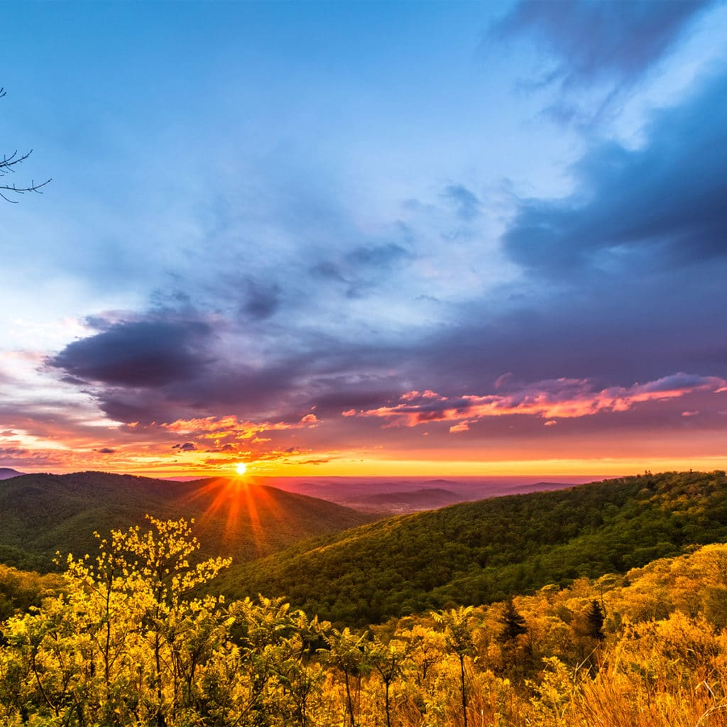 Virginia Wine Country at sunset